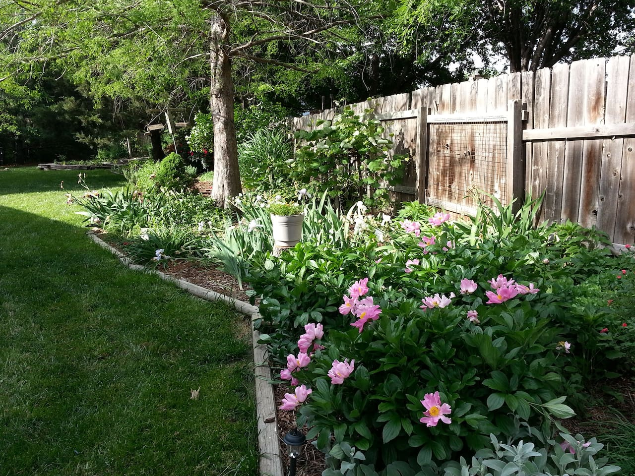 Our beautiful garden, a great spot to relax and smell the roses.