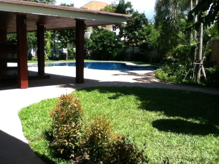 Landscaped garden and lawns