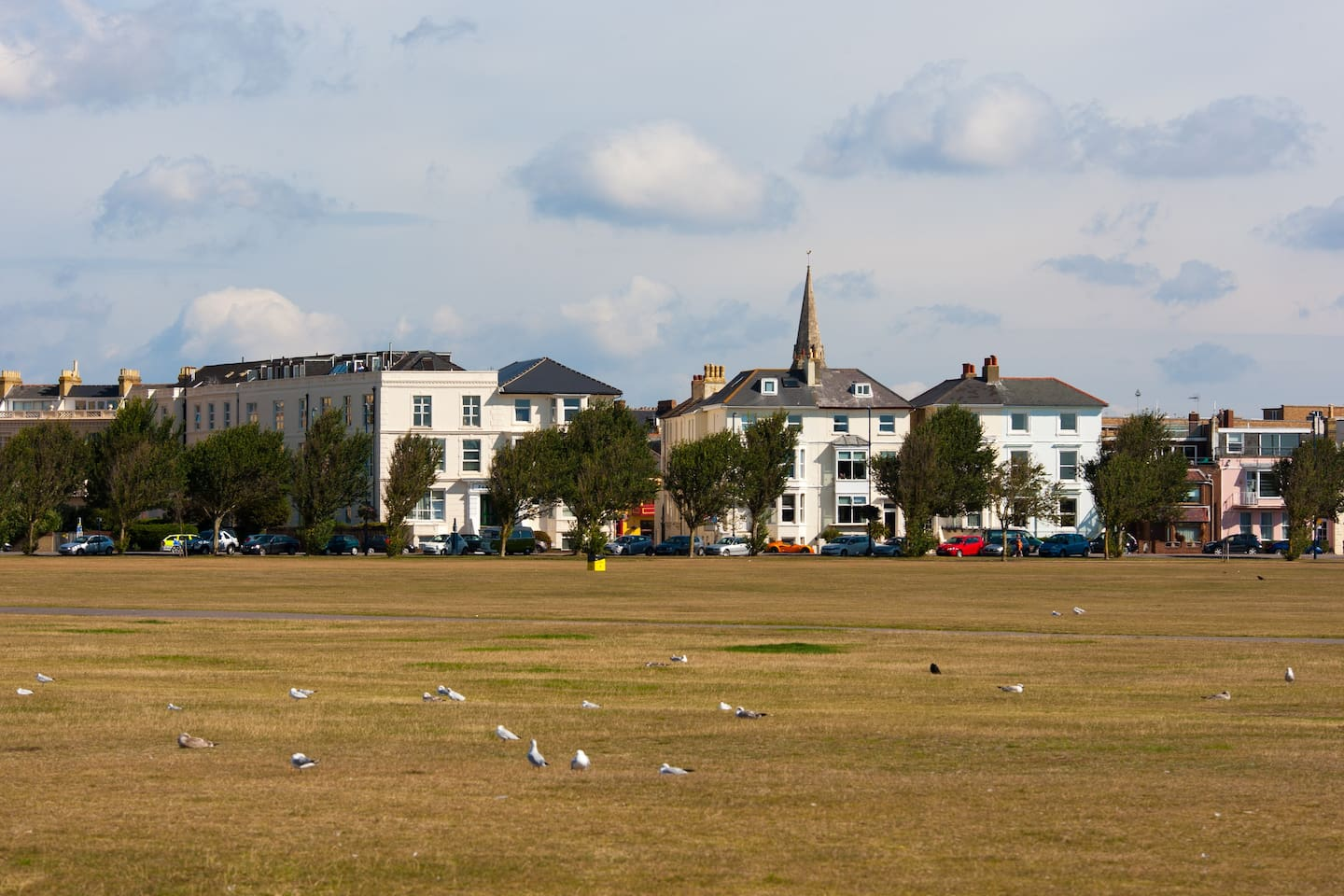 From the park known as Southsea Common looking back at apartment block middle of photo.