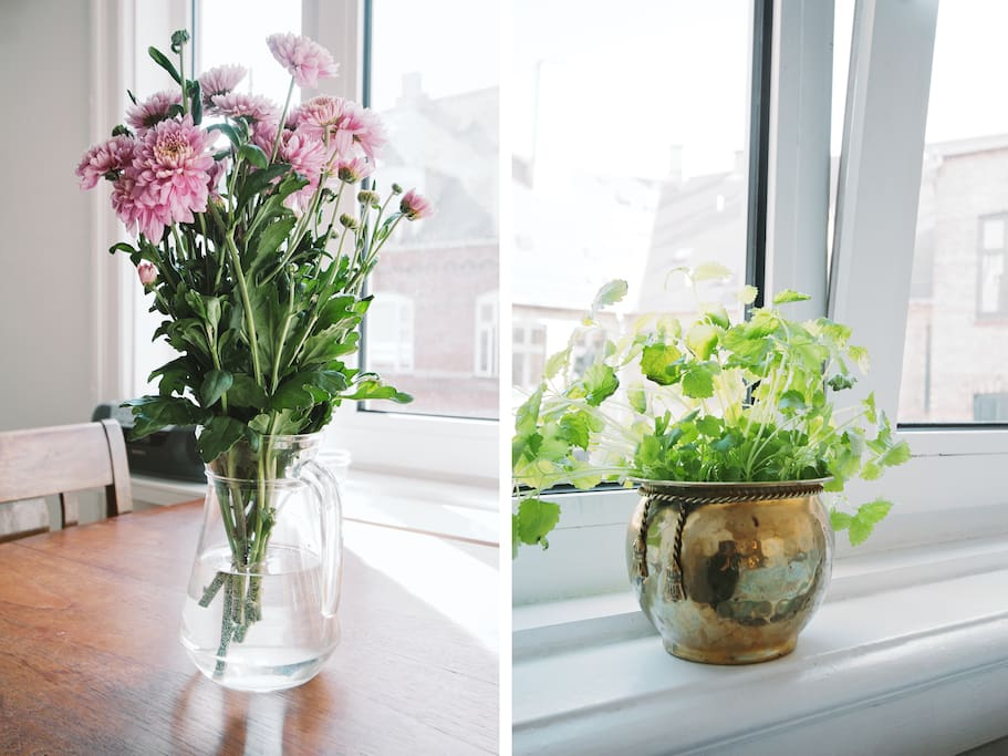 flowers spices up the livingroom and the food.