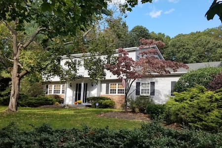 Large Family Home in Dix Hills - Dix Hills