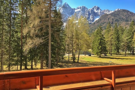 Charming apartment and amazing view on Julian alps - Gozd Martuljek