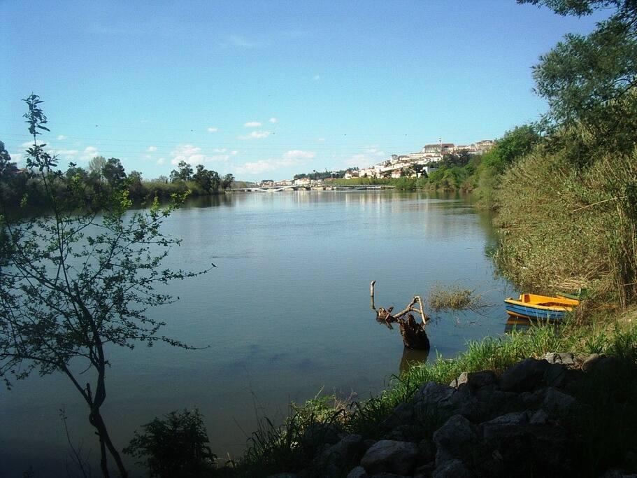 O Rio Mondego do outro lado da via pública