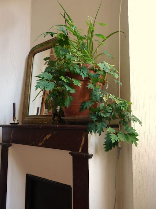 Zoom sur la cheminée décorative de votre chambre
