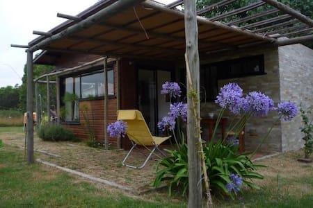 Linda casa en Playa Verde - Hus
