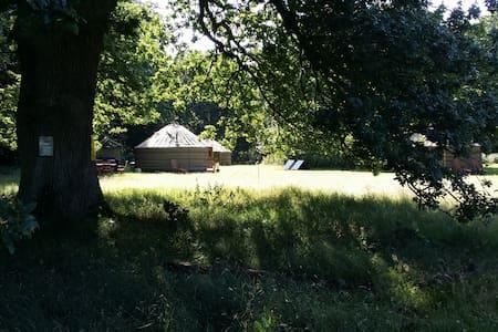 Glamp or Camp at 'Swallowtails' - Norfolk - Yurt