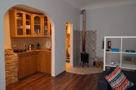Studio apartment with fire place - Riga - Leilighet