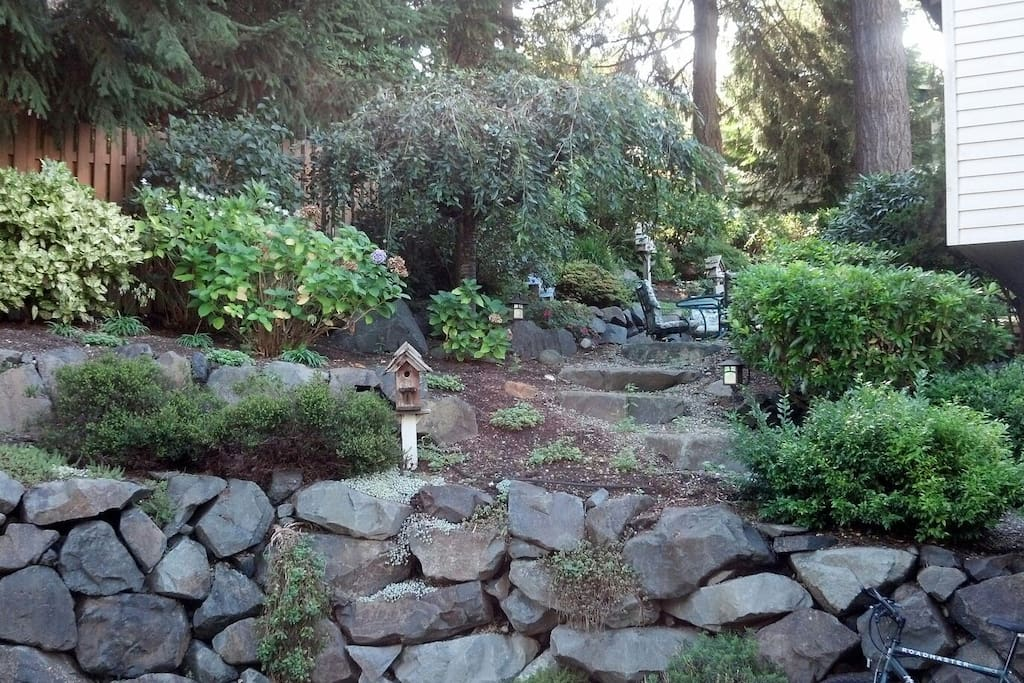 Our neighbor keeps a beautiful garden for us to enjoy year round.