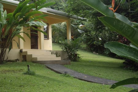 Clean, light, fully screened room with double bed,  private bath (hot shower), small fridge, coffee maker, safe, ceiling fan, hammock for the porch, located at jungle's edge, less than 10 minute walk to surf break. Great wildlife watching.