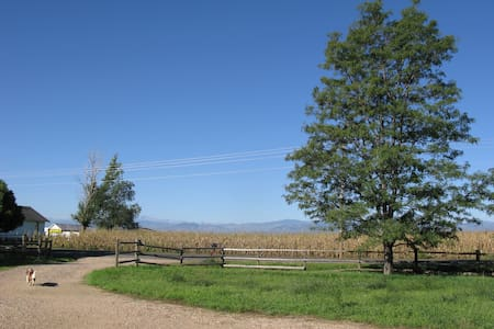 Country home with Rocky Mtn views! - Fort Collins - Haus