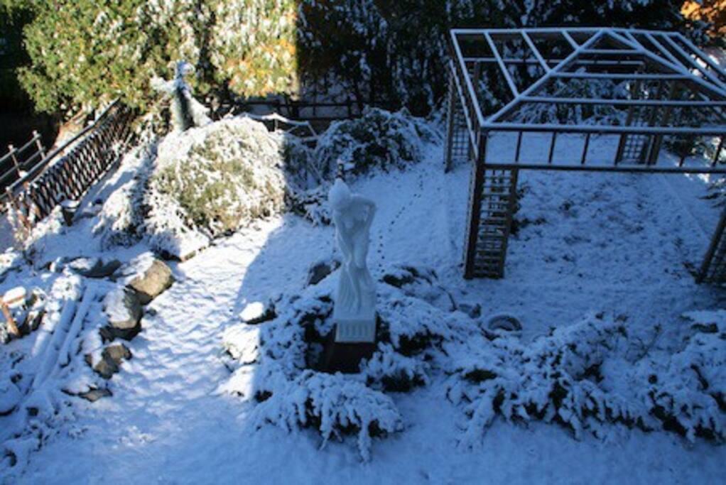 vist jardin en invierno