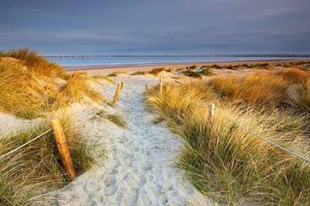 West Wittering award winning beach and dunes...