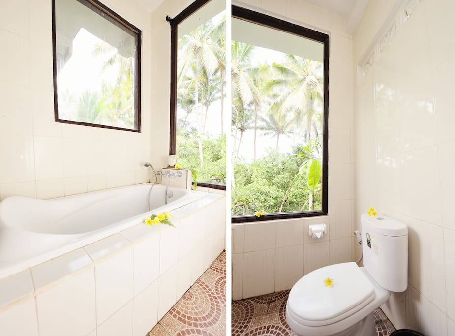 The bathroom has an amazing view of the surroundings.....Jungle