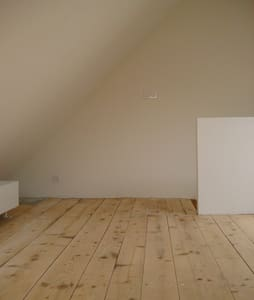 bright room near Aare and old town - House