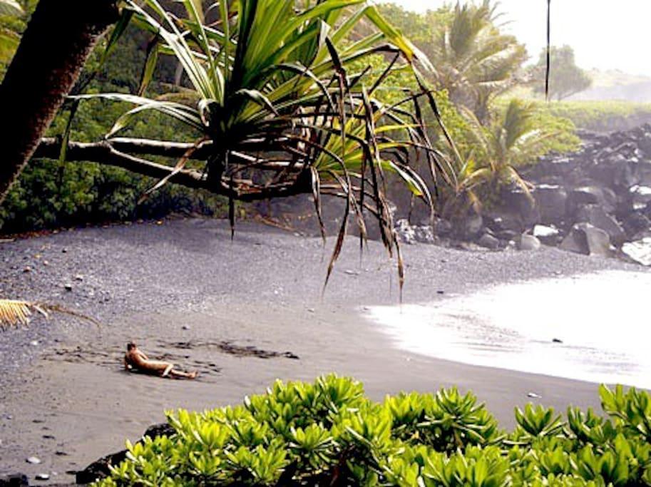 Private access beach near Gay Hawaii B&B. Tan your butt on secluded beaches. Watch cruise lines. Swim with dolphins. Nudist friendly beaches! Near Uncles Awa Bar.  Kalapana Beach. Big Island.