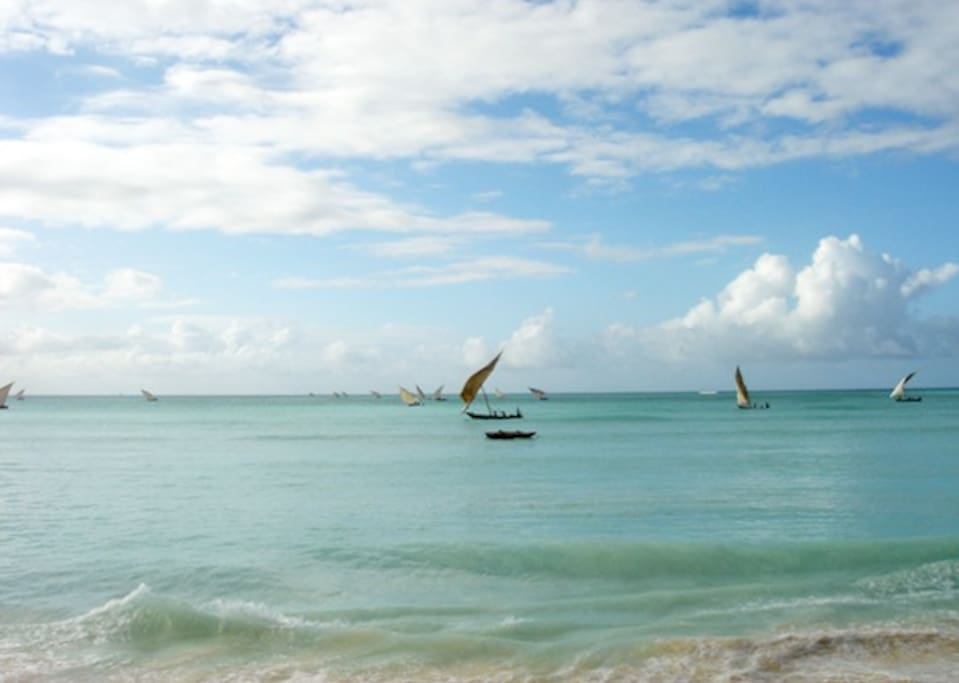 dhows sailing off for a day of fishing