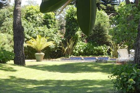 Beautiful house, huge garden, pool