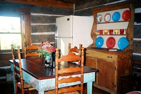 Romantic 1860 Log Cabin Retreat ! - Lexington - Blockhütte