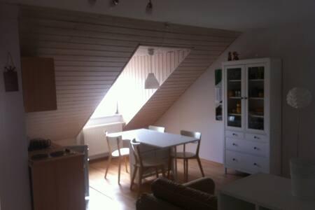 Ferienwohnung oder Arbeitswohnung - Mühlhausen - Appartamento