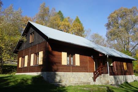 Dom w Uhryniu - Uhryń - Huis