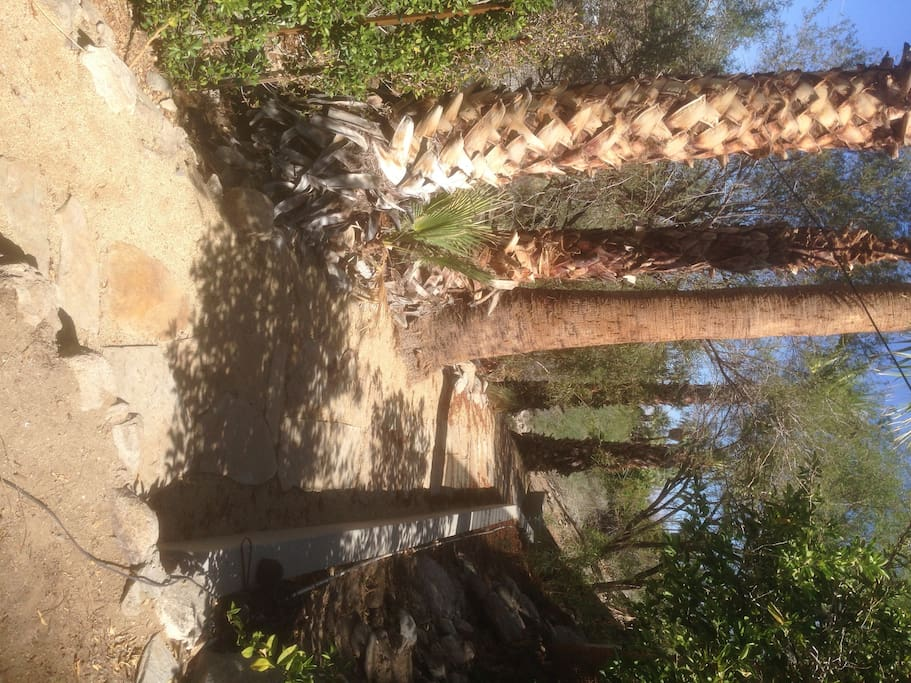 Access to the firepit and hiking trail