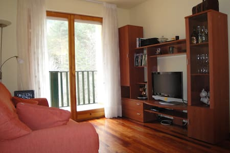 Precioso apartamento en el pirineo - Appartement