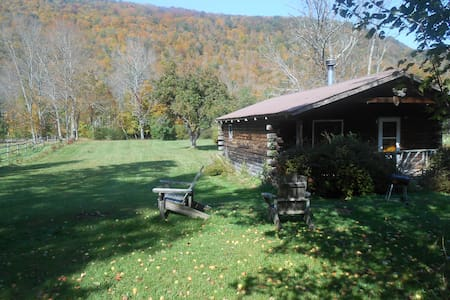 Catskill Cabins with Fireplace 2 br - Big Indian
