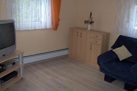 Schönes Einzelzimmer - Lejlighed