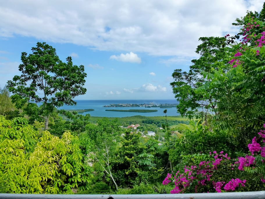 View of the Bay from the Cedar Ridge Balcony, ideal for chilling with friends