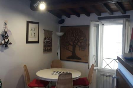 elegante bilocale con terrazzo - Wohnung