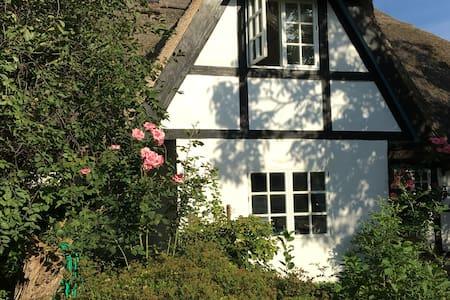 Müritzherbst - Sauna, See + Kamin - Leizen - Casa
