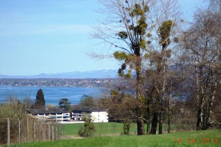 Apartment for yourself near the UN! - Geneve