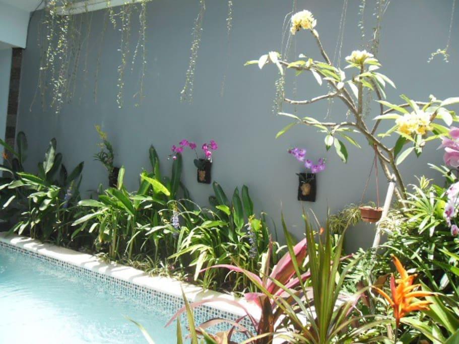 Bali Budget Villa