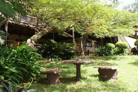 Ndiza B&B or Self Catering Cabanas - St Lucia
