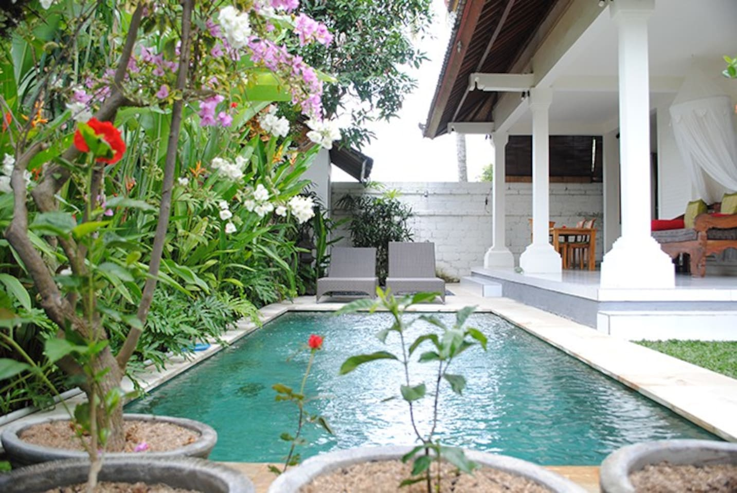 Everywhere looks onto this inviting pool