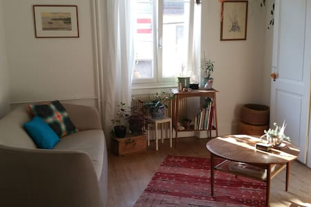 Charming little cocoon in Vevey - Wohnung