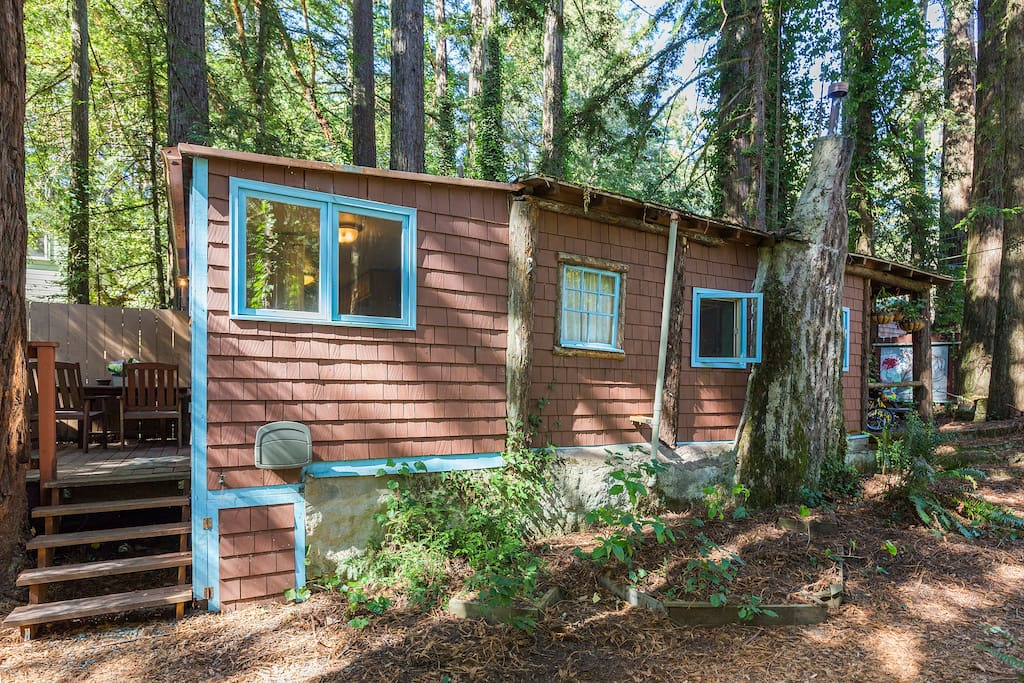 Charming Cottage in a Redwood Grove