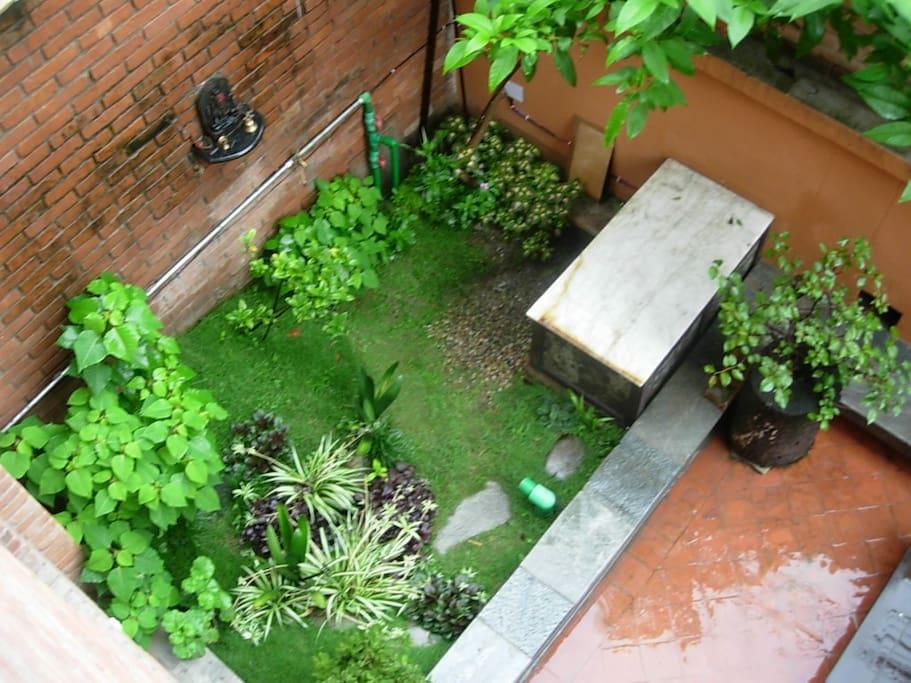 mini garden besides courtyard of living room...