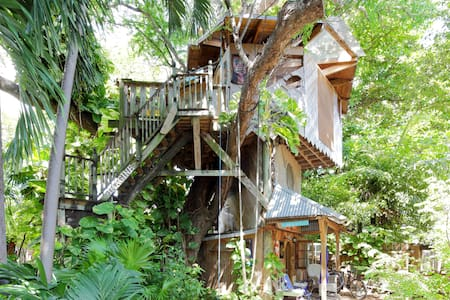 Treehouse Canopy: Permaculture Farm - 迈阿密