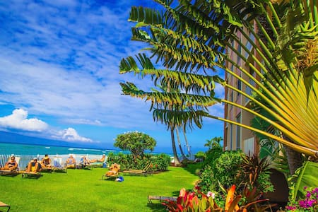 WEST MAUI DIRECT OCEAN FRONT STUDIO - Apartamento