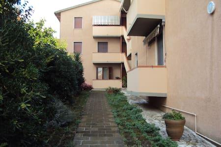From Sandrino-apartment in Maremma - Magliano In Toscana