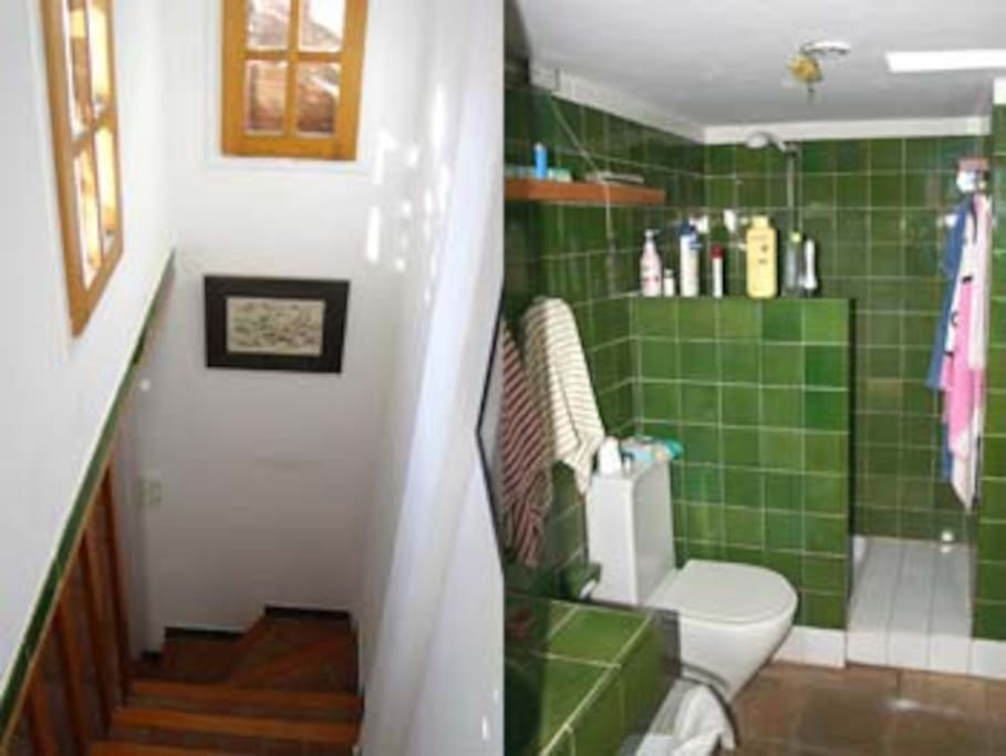 Stairs & Toilet with shower