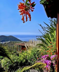 Seaview chalet in tropical garden - Xalet