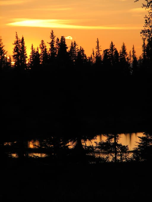 One of the small lakes behind The Bed in the Bog. Sunsets at 8 mile last longer than anywhere else in Alaska.