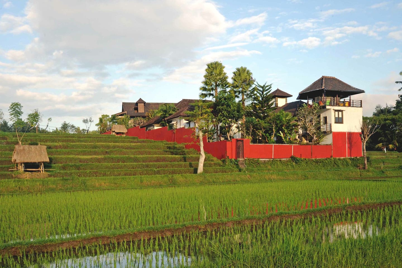 Villa dans les rizières, relation garantie