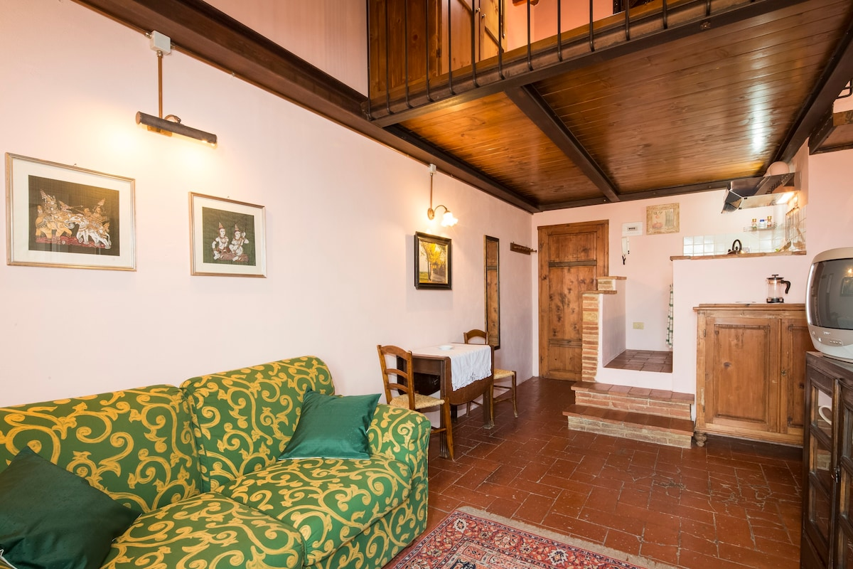 Rental apartments in San Gimignano from the owners