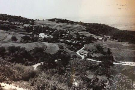 Casa in collina. - Faedis - House
