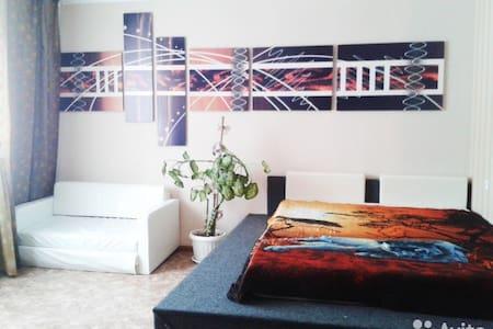 Уютная 1-комнатная квартира - Flat