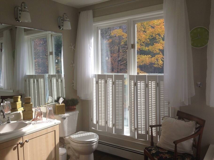Yellow autumn leaves outside the windows of your Treetops Ensuite private bathing room.