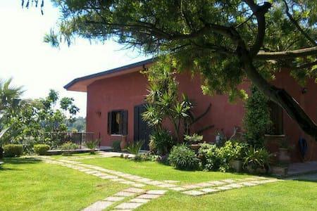 Villa Daniela immersa nel verde. - Campania, IT - Bed & Breakfast